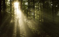 Silhouette of a man standing in the sunrays of a dark, misty forest, Denmark Fine-Art Print