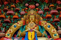 Buddha statues at Stok Palace, Ledakh, India Fine-Art Print