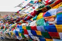 India, Jammu and Kashmir, Ladakh, Namshangla Pass prayer flags Fine-Art Print