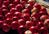India, Ladakh, Leh. Apples at market in Lamayuru Fine-Art Print