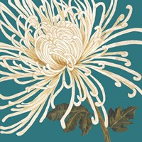 Mix of Mums II Fine-Art Print