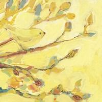 Dipped in Honey Fine-Art Print