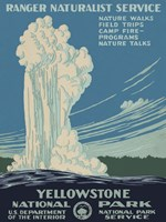 Yellowstone National Park Fine-Art Print