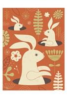 Pop up Bunny Fine-Art Print
