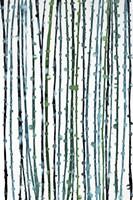 Aqua Vine Fine-Art Print