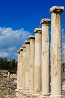Israel, Bet She'an National Park, Columns Fine-Art Print