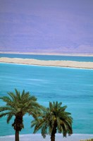 Dead Sea, Israel Fine-Art Print