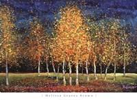 Evening Grove Fine-Art Print