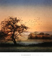 Good By Day Birds Fine-Art Print
