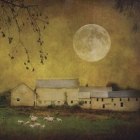 Sheep Under a Harvest Moon Fine-Art Print