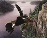 Wings Over the St. Croix Fine-Art Print