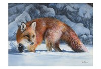 Fox at the Pines Fine-Art Print