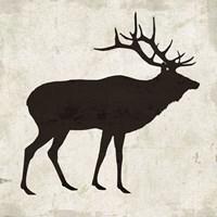 Elk Fine-Art Print