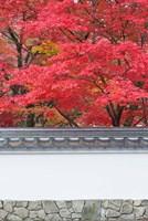 Eikando Temple, Kyoto, Japan Fine-Art Print