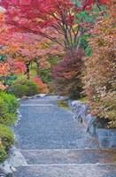 Tenryuji Temple Garden, Sagano, Arashiyama, Kyoto, Japan Fine-Art Print