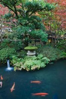 Japanese Garden, Tokyo, Japan Fine-Art Print