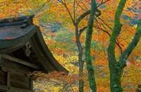 Kibune Shrine, Kyoto, Japan Fine-Art Print