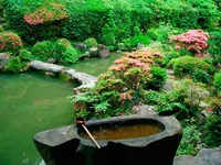 Green Zen Garden, Kyoto, Japan Fine-Art Print