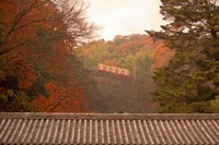 Fall Color around Cable Train Railway, Kyoto, Japan Fine-Art Print