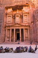 Camels at the Facade of Treasury (Al Khazneh), Petra, Jordan Fine-Art Print