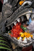 Flower Offerings in Stone Dragon's Mouth, Laos Fine-Art Print