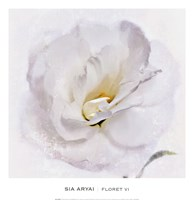 Floret VI Fine-Art Print