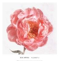 Floret V Fine-Art Print