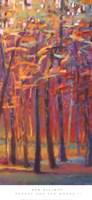 Orange and Red Woods II Framed Print