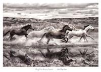 On The Run Fine-Art Print