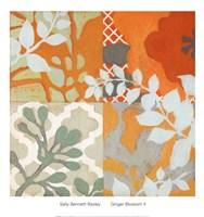 Ginger Blossom II Fine-Art Print