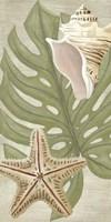 Palm Beach III Fine-Art Print