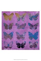 Butterflies on Magenta Fine-Art Print