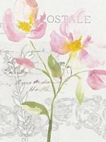 Romantic Watercolor I Fine-Art Print