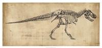 Tyrannosaurus Rex Study Fine-Art Print