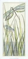 Gossamer Dragonflies I Fine-Art Print