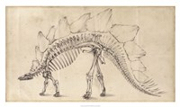 Dinosaur Study III Fine-Art Print