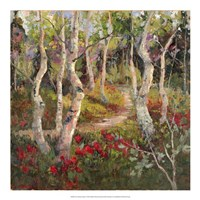 Four Seasons Aspens I Fine-Art Print