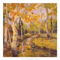 Four Seasons Aspens III Fine-Art Print