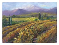 Vineyard Tapestry I Fine-Art Print