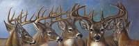 Five Bucks Fine-Art Print