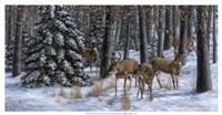 Winter Gathering Fine-Art Print