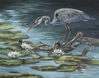 Heron Haven Fine-Art Print