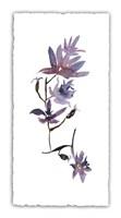 Floral Watercolor IV Fine-Art Print