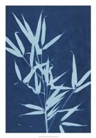 Cyanotype No.2 Fine-Art Print