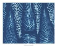 Cyanotype No.7 Fine-Art Print