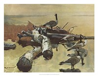 Geese on the Great Flyway Fine-Art Print