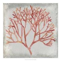 Watercolor Coral IV Fine-Art Print