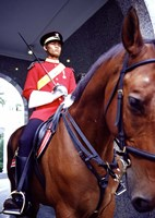 Malaysia, Kuala Lumpur: a mounted guard stands in front of the Royal Palace Fine-Art Print