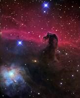 Horsehead Nebula Fine-Art Print