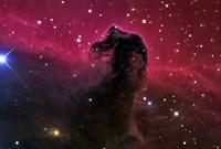 The Horsehead Nebula Fine-Art Print
